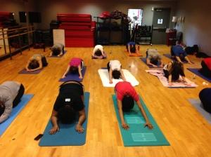 St. John's - Hatha Yoga Class